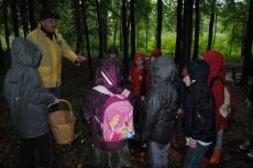 Mycologie (étude des champignons), bois d''Havré