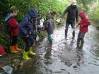 Etude de la qualité biologique d'une rivière