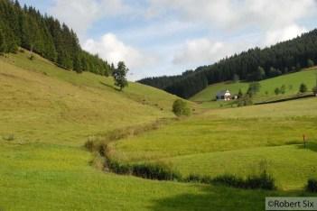 Forêt-Noir_16