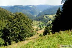 Forêt-Noir_22
