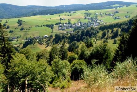 Forêt-Noir_23