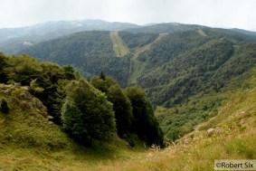 Forêt-Noir_40
