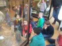 12/03/14 : Ornithologie. (Etude des oiseaux). Cours + atelier.
